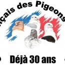 Club français des pigeons Cravatés – Saison 2017