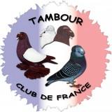 Logo Tambours