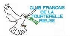 Logo tourterelles