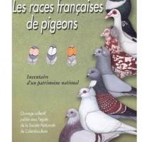 PROMO : Les races françaises de pigeons