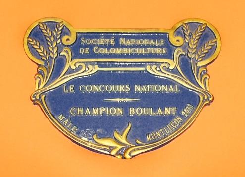 photo plaque champion