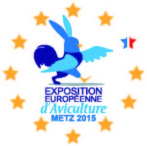logo officiel metz 2015