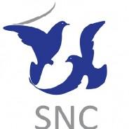La SNC quitte la SCAF
