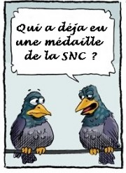 caricature pigeon