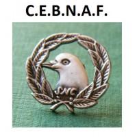 Les médaillés du CEBNAF