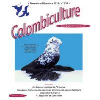 Colombiculture n° 238 chez vous