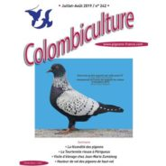 Colombiculture n° 242 en cours d'impression