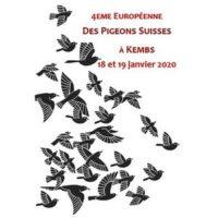 Championnat d'Europe des pigeons suisses